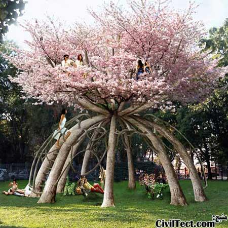 معماری ۱۰۰ ساله درختان زنده!