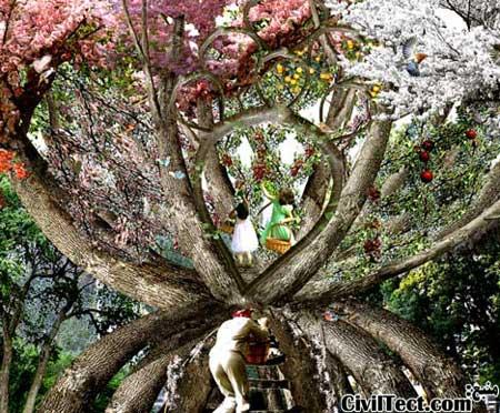 ساخت کلبه از درختان زنده و در حال رشد