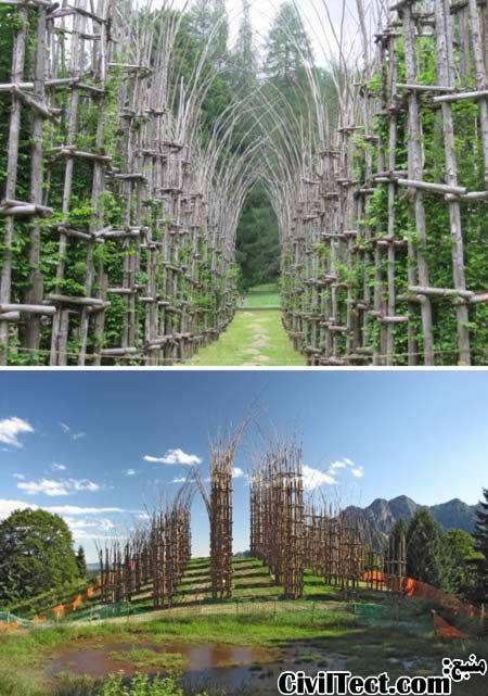 کلیسای ارگانیک ساخته شده از درختان زنده