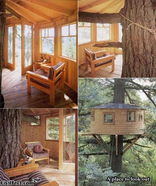 خانه درختی برای دیدبانی!