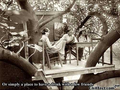 جایی برای صرف چای در بالای درخت!
