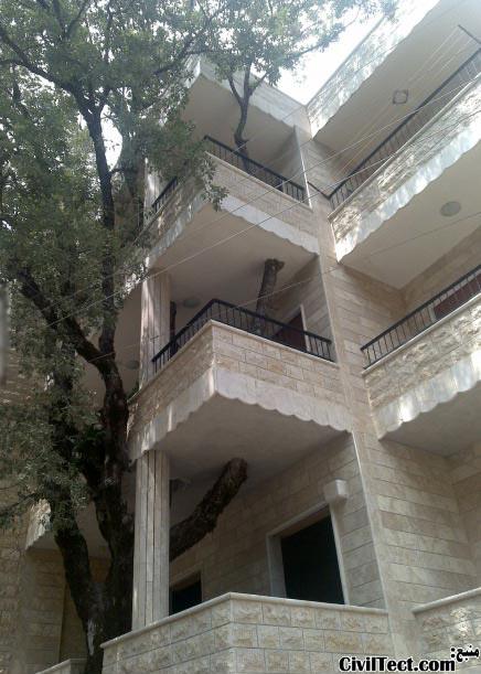 قرار دادن درخت در سازه ساختمان