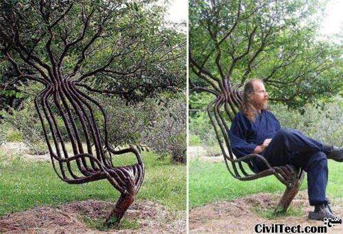 صندلی زنده - شکلدهی به چوب درختان در حال رشد