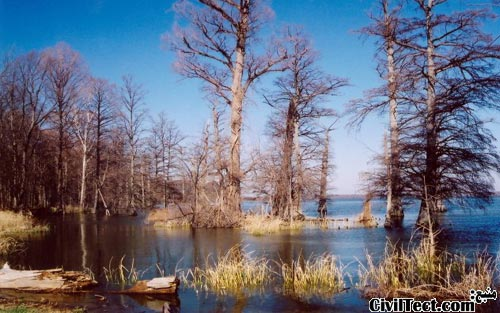 Reelfoot Lake created by NewMadrid Earthquakes