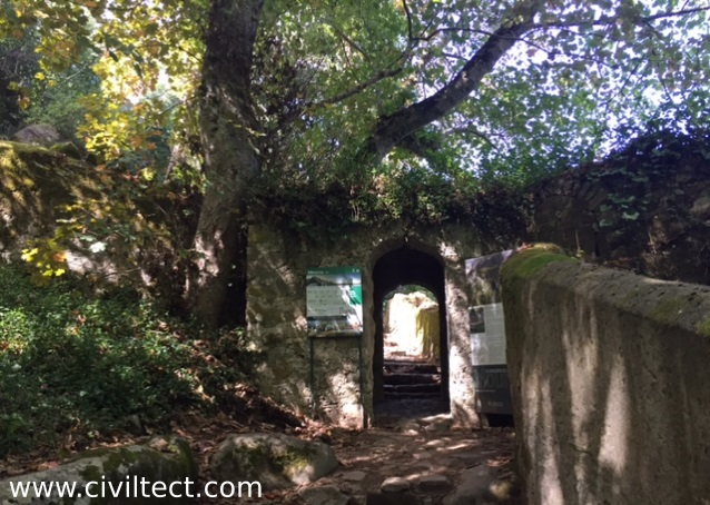 مسیر جنگلی رسیدن به کاخ پنا
